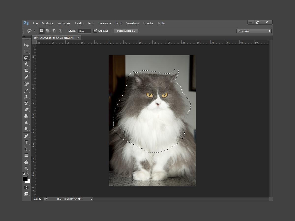 Trasformare una foto in stampa serigrafica con Photoshop